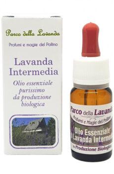 Olio Essenziale di Lavanda Intermedia